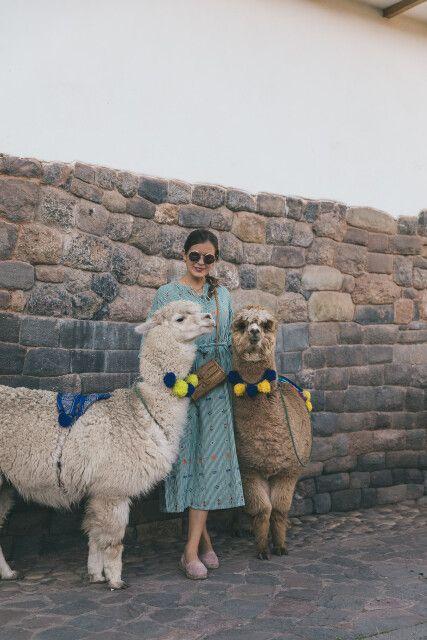 Alpakas im Zentrum von Cusco mit Bloggerin Sarah Eichhorn von 'josieloves'
