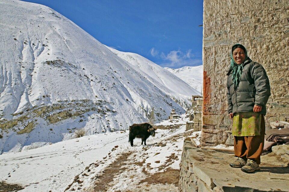 Nomadin in Ladakh