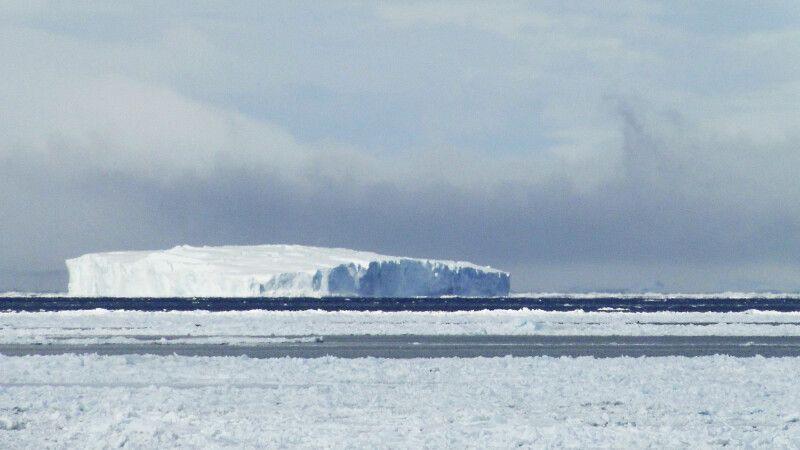 Packeis und riesiger Tafeleisberg im Weddellmeer © Diamir