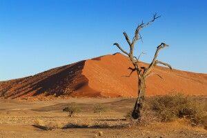 Dünen im Sossusvlei