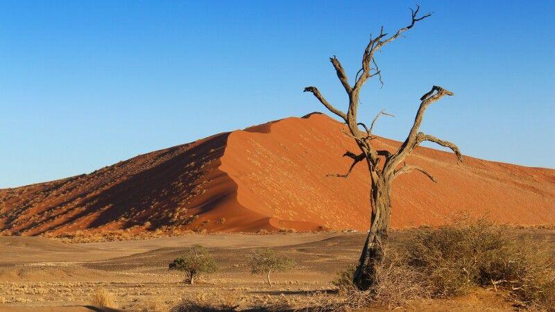 Dünen im Sossusvlei © Diamir