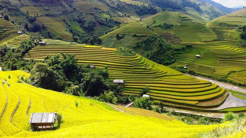 Wandern in der Bergen von Mu Cang Chai © Diamir