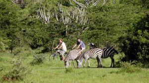 Fahrradsafari im Lake Mburo NP