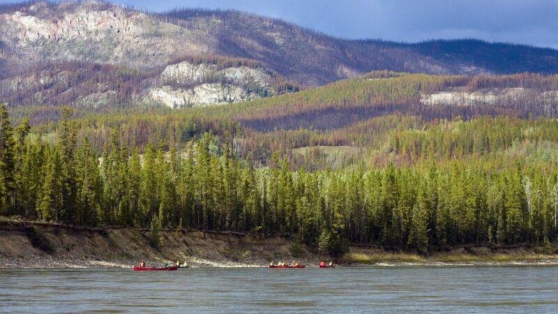Mit Kanus auf dem mächtigen Yukon River © Diamir