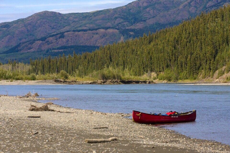 Rast am Ufer des Yukon
