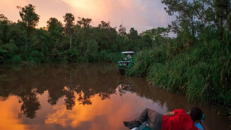 Sonnenuntergang auf Kalimantan © Diamir