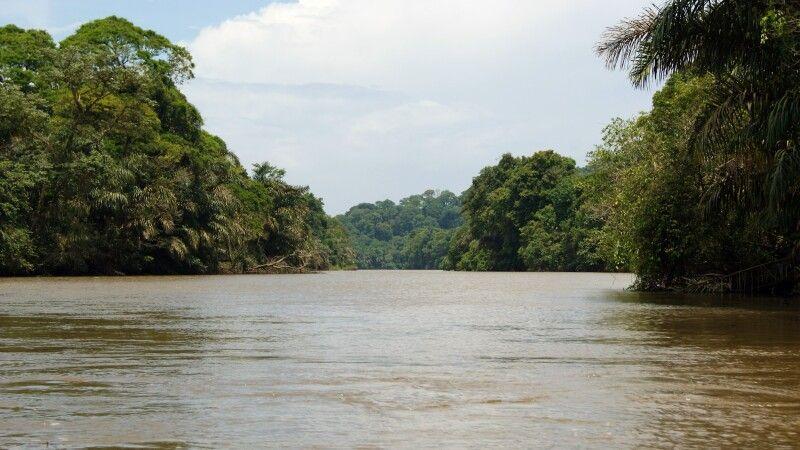 Unterwegs in den Kanälen des Tortuguero NP © Diamir