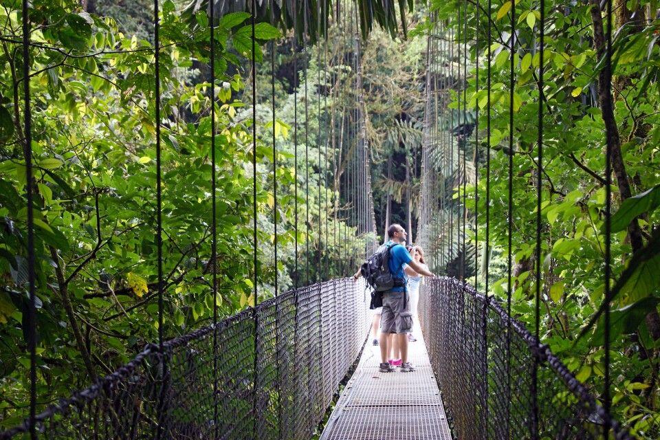 Abenteuer Hängebrücken - Tierbeobachtung aus einer völlig anderen Perspektiven