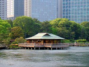 Hamarikyu – Tea house.jpg
