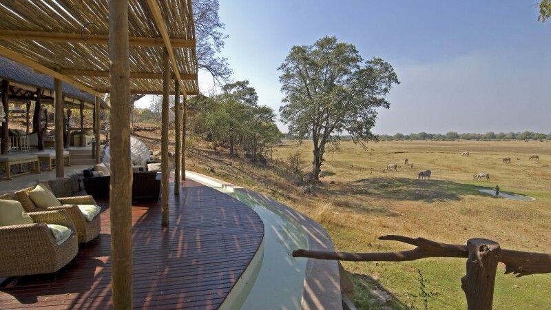 Zebras vor dem Puku Ridge Camp © Diamir