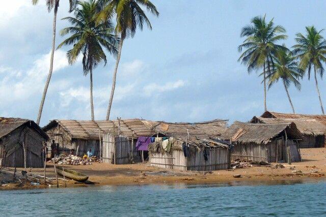 Flussufer während einer Bootsfahrt