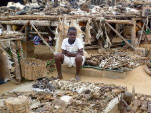 Togo, Fetischmarkt, Verkaeufer