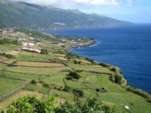 Die Küste von Pico