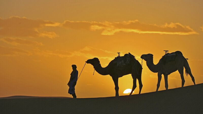 Abendstimmung in der Wüste © Diamir