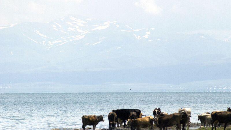 Am Ufer des Sewan © Diamir