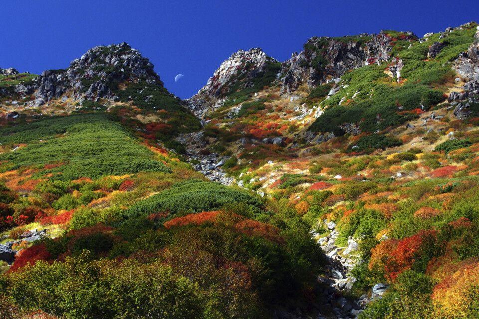 Herbstlaubfärbung am  Mt.Ontake (3067m)