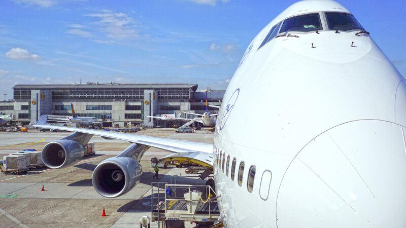 Lufthansa in Frankfurt © Diamir