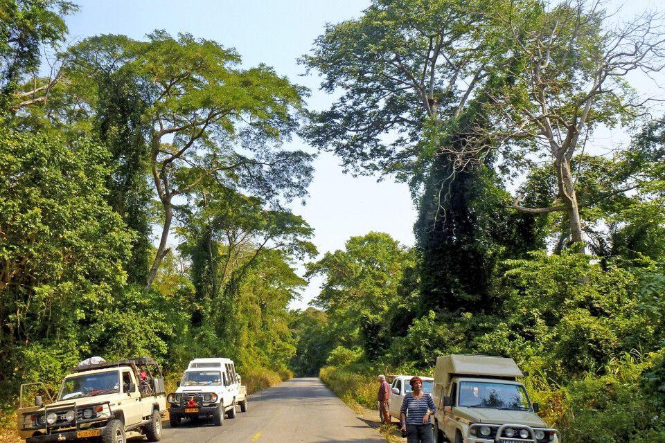 Safari in Angola