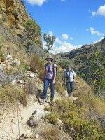 Wandern im Isalo Nationalpark