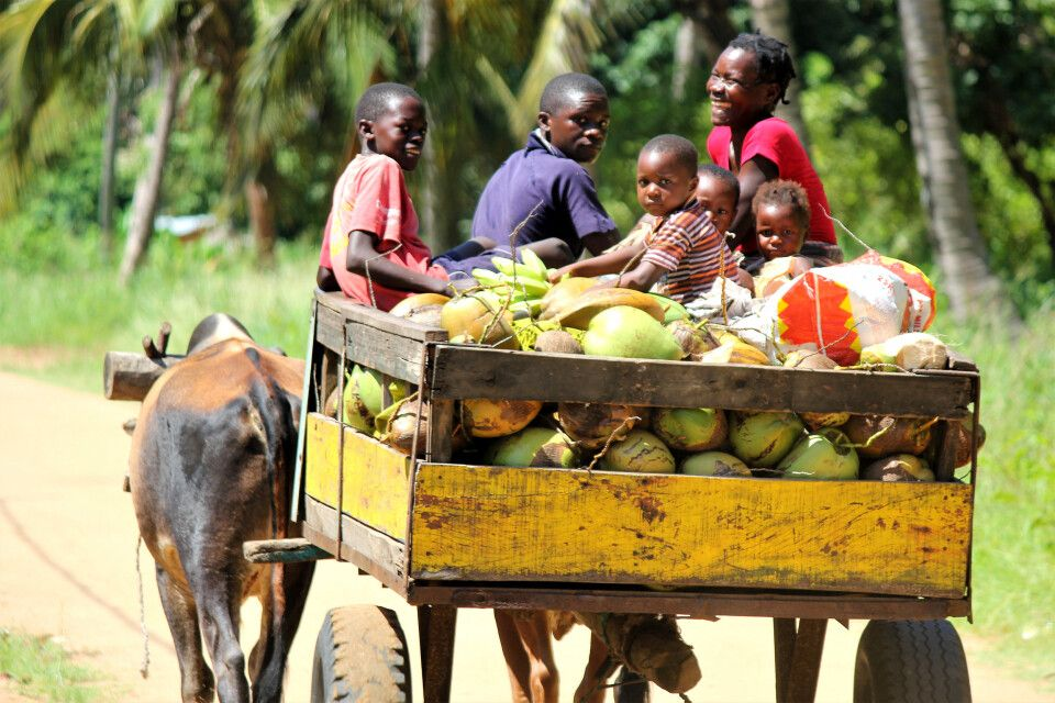 Familie auf dem Weg zum Markt, Sofala-Provinz
