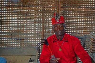 kongolesischer Feticheur