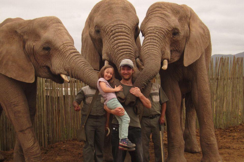 Begrüßung auf Elefanten-Art