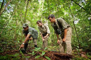 Nachhaltiges Naturerelebnis auf den Wanderwegen der Cristalino Jungle Lodge