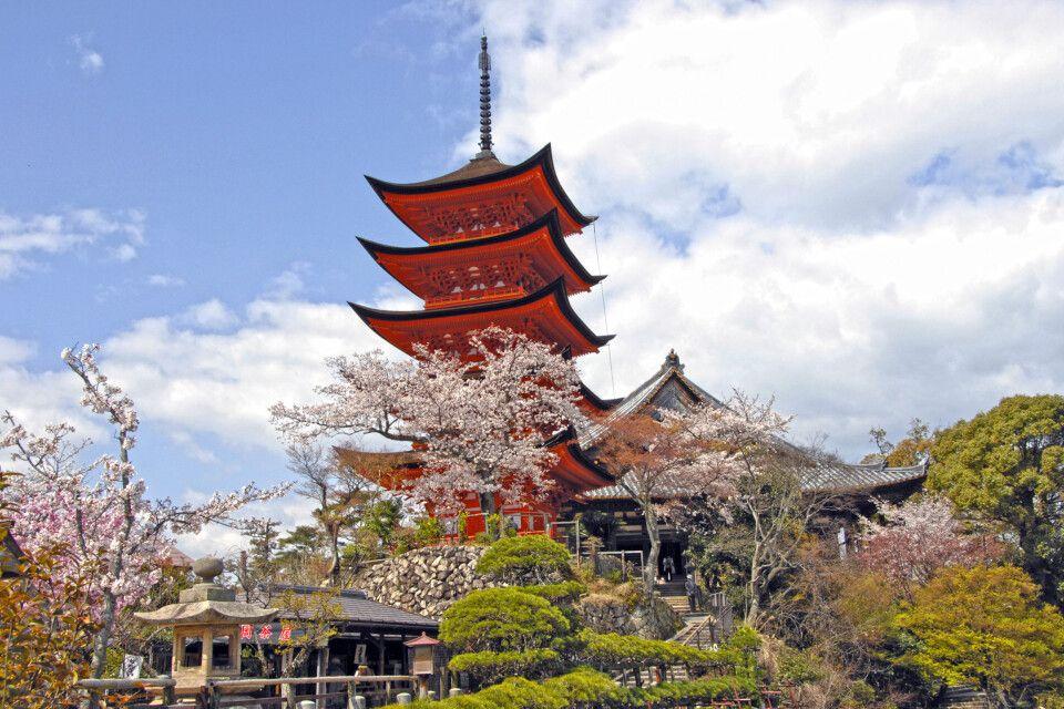 Die 5-stöckige Pagode auf der Insel  Miyajima