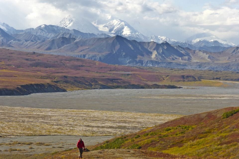 Blick vom Eielson Visitor Center Richtung Mount Denali