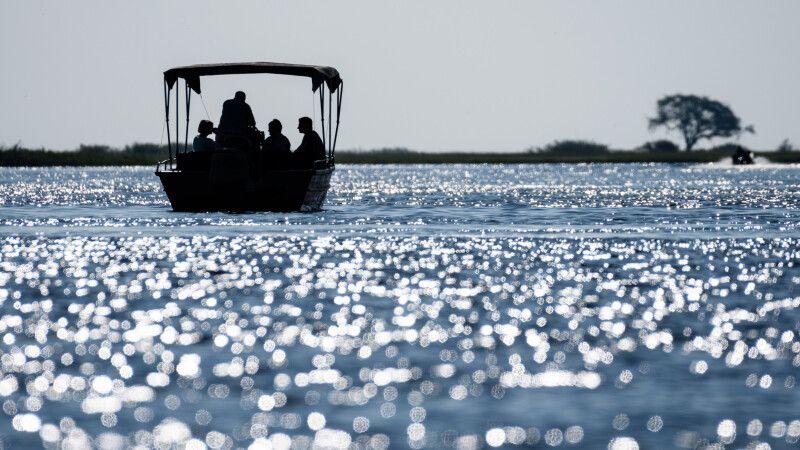 Mit dem Boot unterwegs auf dem Chobe-Fluss © Diamir