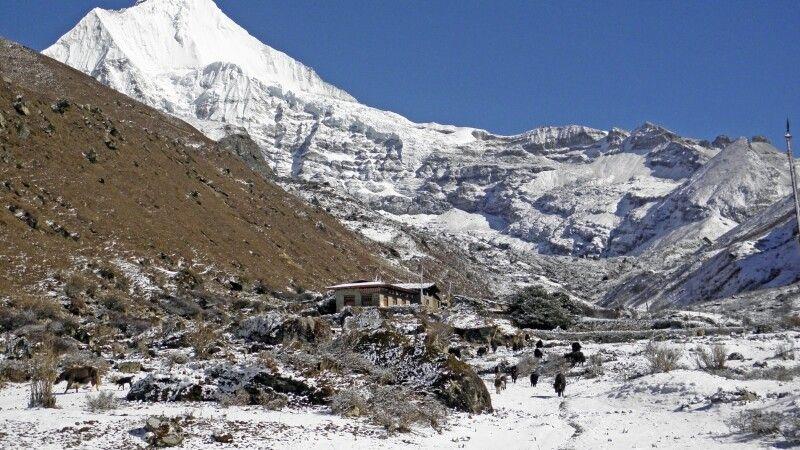 Jomolhari-Trekking vorbei am Jichu Drake (6990 m), dem schönsten Gipfel Bhutans © Diamir