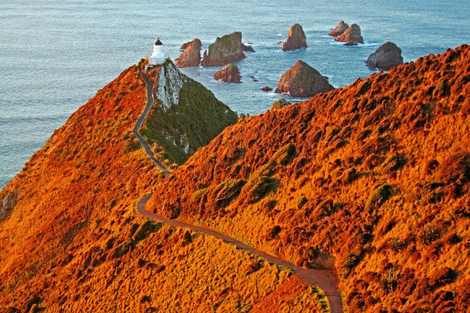Kap Nugget Point, Southland, Neuseeland