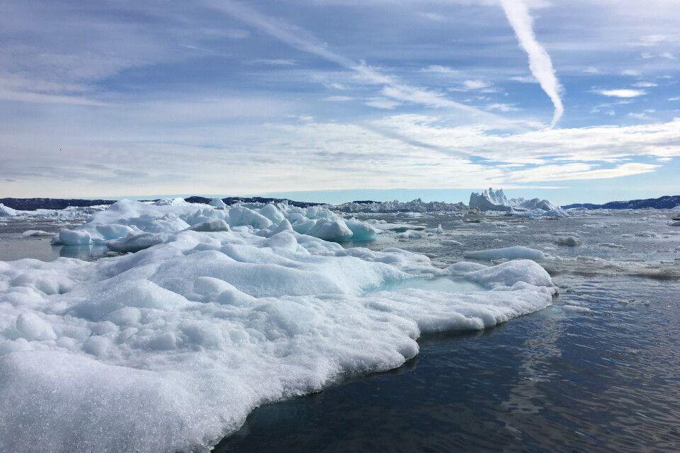 Diskobucht - Welt der Eisberge
