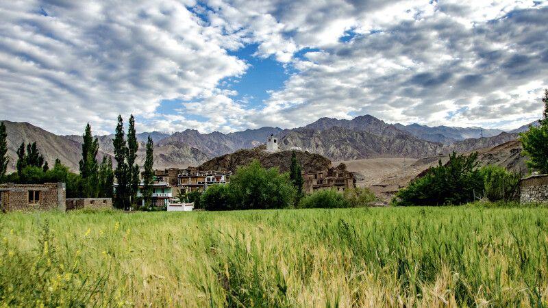 Alchi im Indus-Tal © Diamir