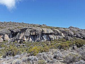 Die Zebra-Felsen