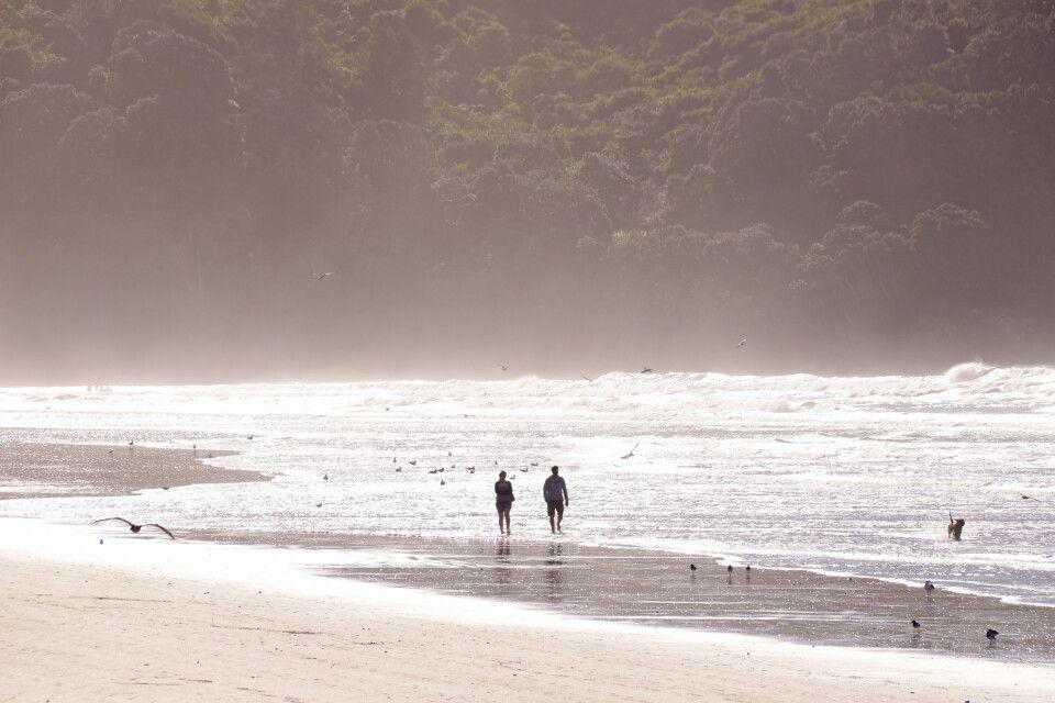 Spaziergang an einem Strand der Bay of Plenty
