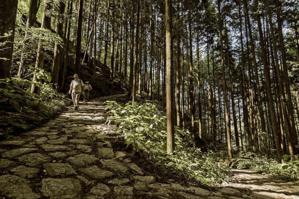 Wandern auf dem Nakasendo – der alten Handelsstraße zwischen Kyoto und dem einstigen Edo.