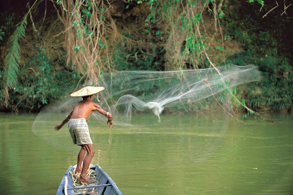 Netzfischer auf einem Fluss in Sarawak