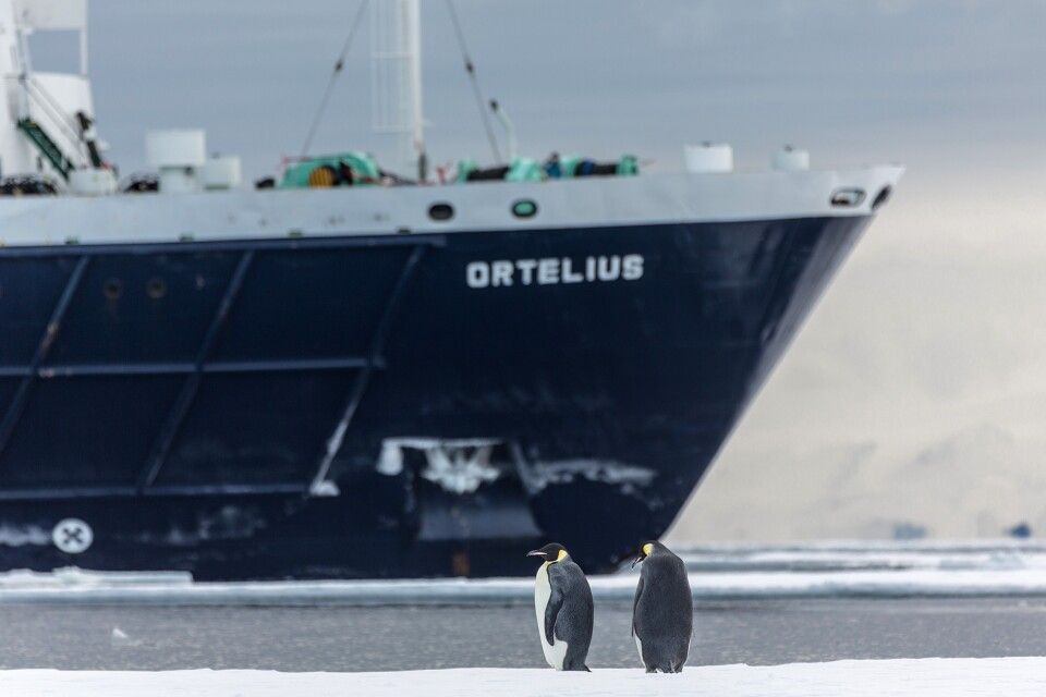 Die Ortelius und Kaiserpinguine, McMurdo Sound, Rossmeer