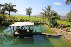 Weingut am Inle-See