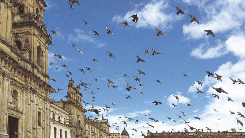 An der Kathedrale in Bogota © Diamir